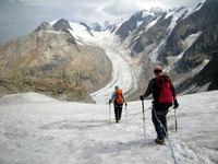 Stage autonomie glaciers